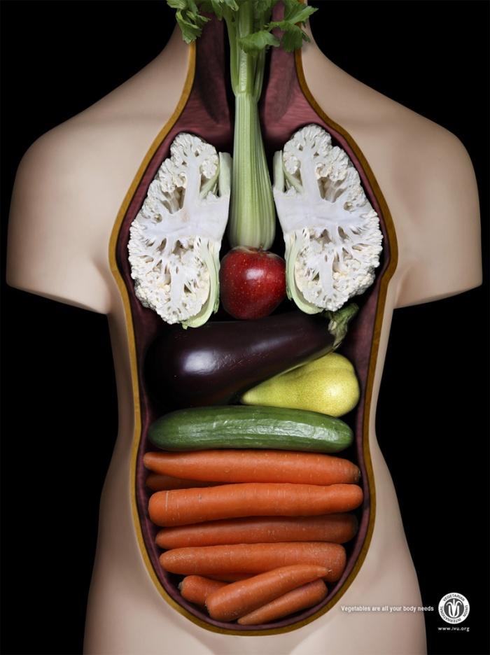 vegetarianos_cuerpo