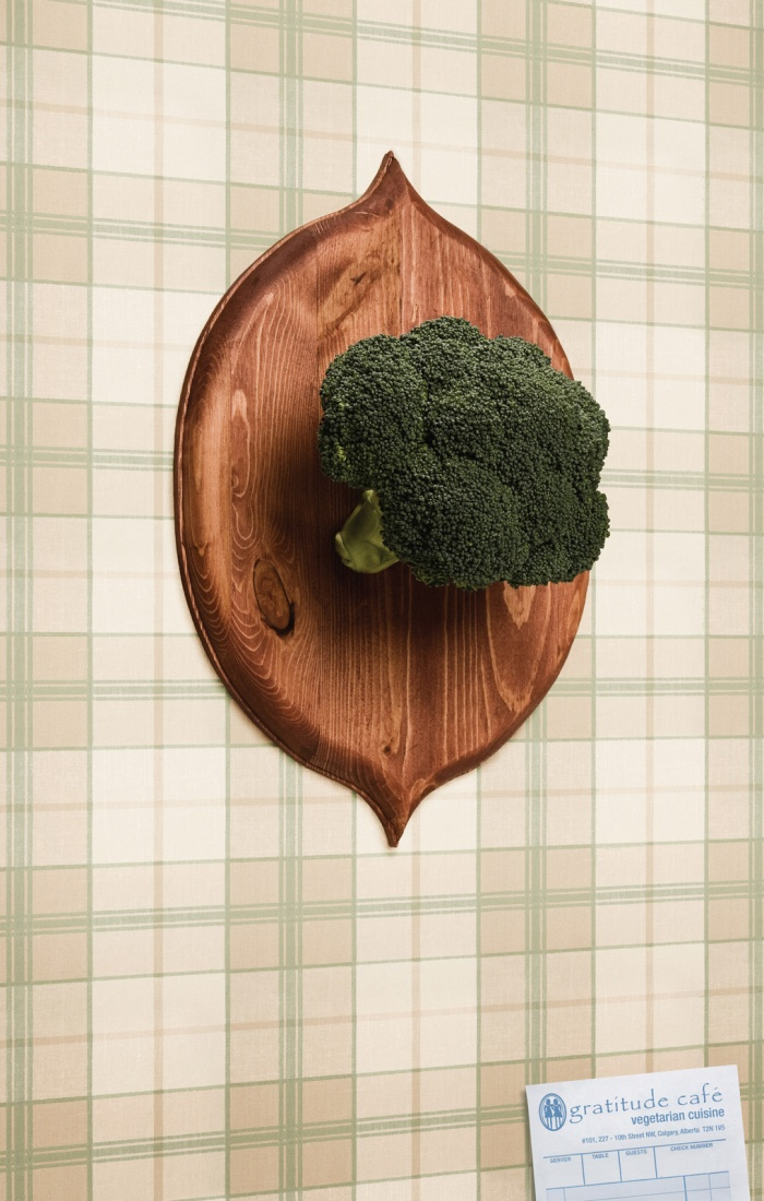 Vegetarian-Cuisine-1-o